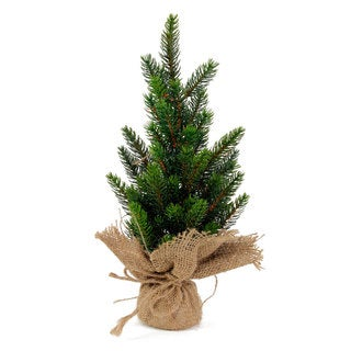 Sage & Co 5-inch x 5-inch x 14-inch Mini Pine Tree In Burlap (Pack of 6)