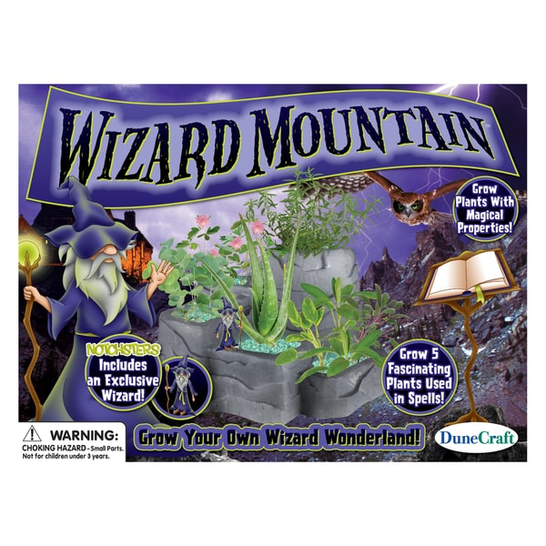 Wizard Mountain