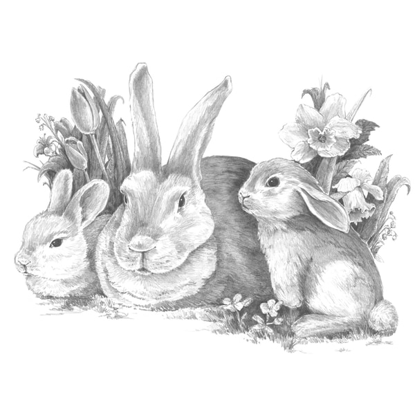 "Sketching Made Easy Large Kit 16""X12.75""-Bunnies"