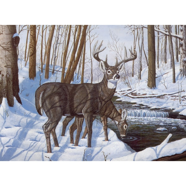 "Paint By Number Kit 15.375""X11.25""-Winter Bliss"