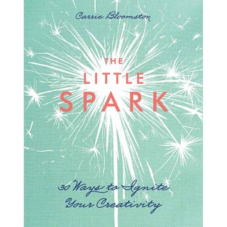 Stash Books-The Little Spark
