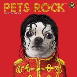 2015 'Pets Rock' Wall Calendar