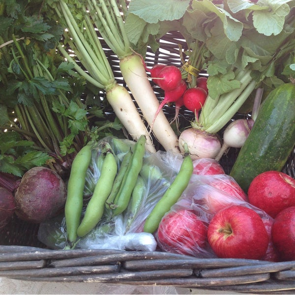 Beneficial Farm Fresh Produce and Cheese Share (Local Delivery)