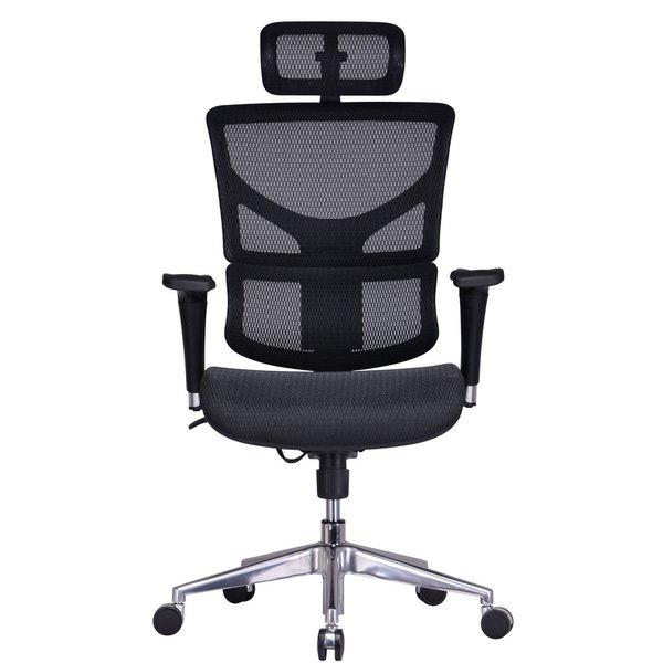 GM Seating ErgoHuman Chrome Base Executive Ergonomic Chair with Headrest