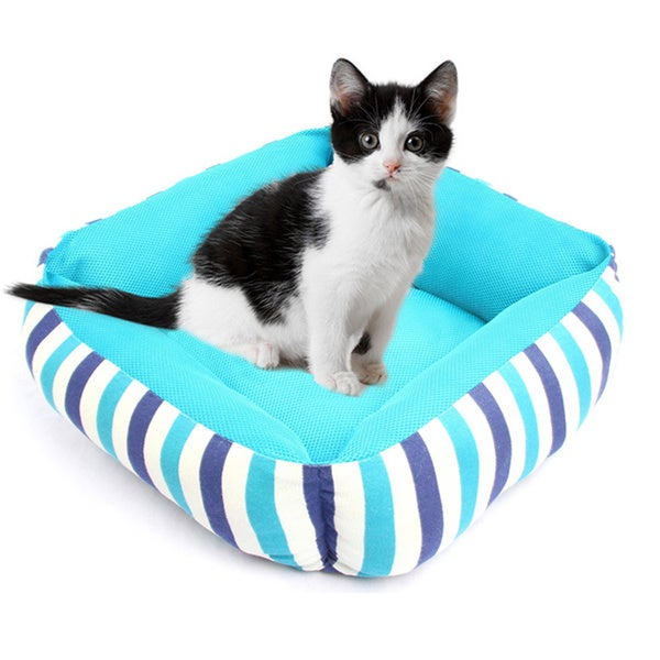 Purrrfect Life Bright Teal Stripe Pet Bed