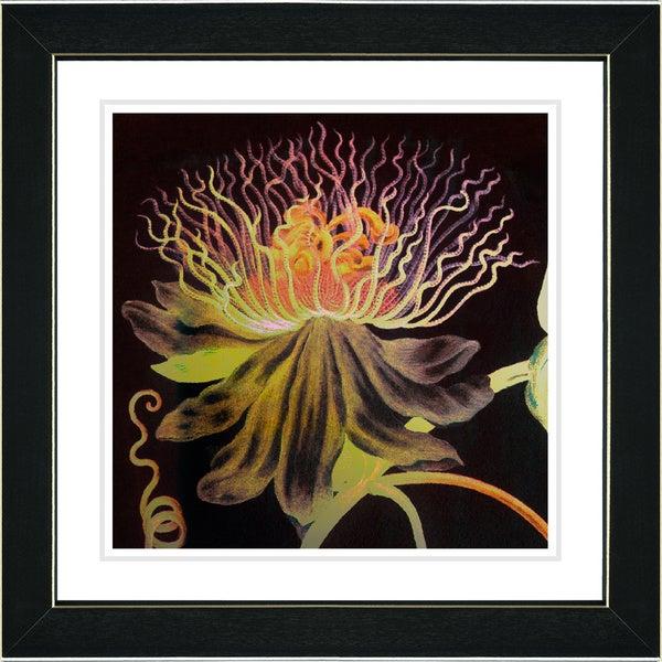 Studio Works Modern Zhee Singer 'Black Bonobo Bell Flower' Framed Fine Art Print