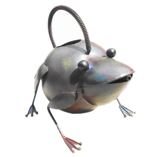 Iron Frog Watering Can (Indonesia)
