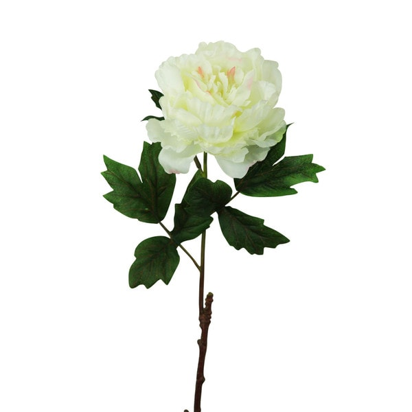 Cream White 20-inch Peony Stem Decorative Flower (Set of 12)