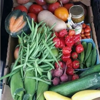 A Taste of Jewell Sustainable Fresh Produce Bundle (Local Delivery)