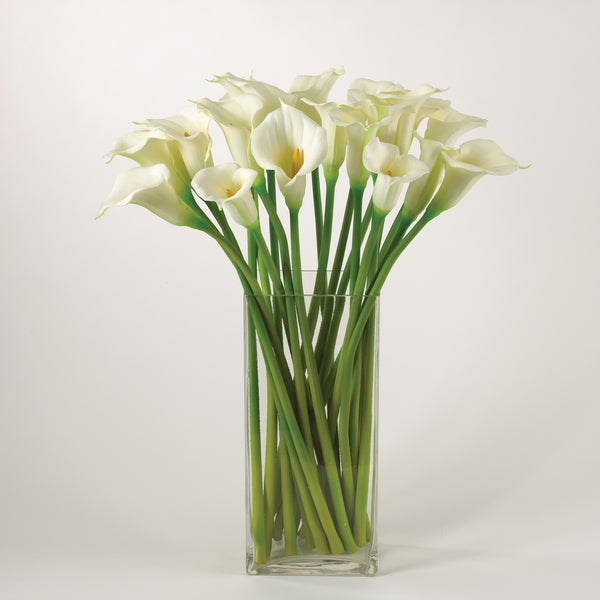 Calla Lily - set of 12