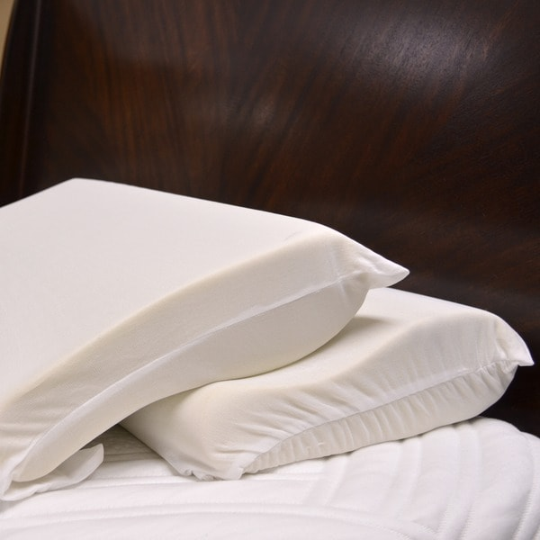 Integrity Bedding Ergonomic Contour Memory Foam Pillow (Set of 2)
