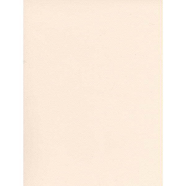Canson Mi-Teintes Tinted Paper