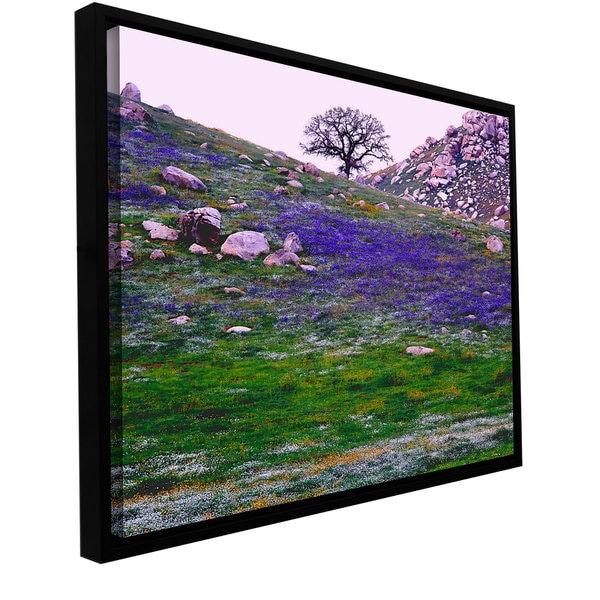 ArtWall Dean Uhlinger 'Sierra Foothills Spring' Floater Framed Gallery-wrapped Canvas 14469245