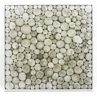 Plank Evocative Bleached Offshoot Wall Hanging (Indonesia)