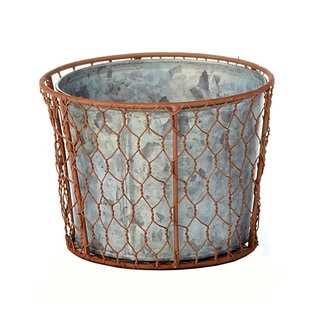 6-inch x 4.5-inch Chicken Wire Pot (Pack of 6)