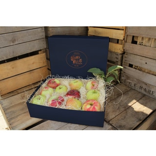 Quarry Hill Orchards Fresh Mixed Apple Sampler Box