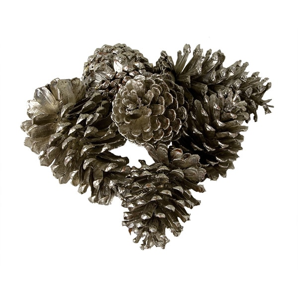Large Pine Cones in Bag (Set of 6)