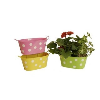 Assorted 9-inch Oblong Metal Polka Dot Container (Set of 3)