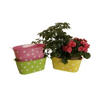 Assorted 13-inch Oblong Metal Polka Dot Container (Set of 3)