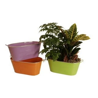 Wald Imports Assorted 13-inch Oblong Painted Metal Container (Set of 3)