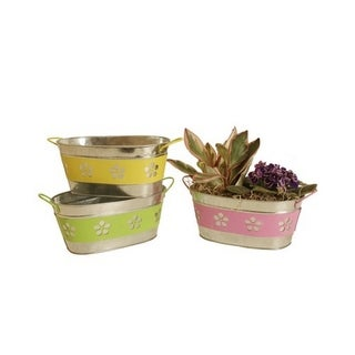 Assorted 9-inch Oblong Metal Flower Band Containers (Set of 3)
