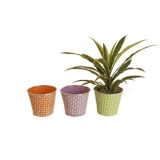 Wald Imports Assorted 7-inch Pastel/ Dots Distressed Containers (Set of 3)