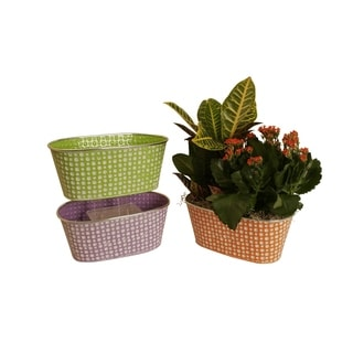 Wald Imports Assorted 13-inch Oblong Pastel/ Dots Distressed Containers (Set of 3)