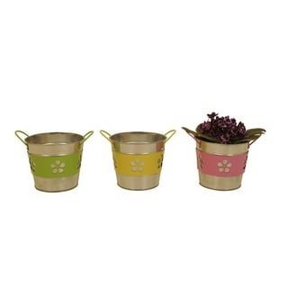 Assorted 5-inch Round Metal Flower Band Containers (Set of 6)