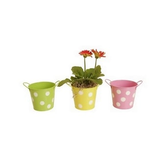 Assorted 5-inch Round Metal Polka Dot POT Containers (Set of 6)