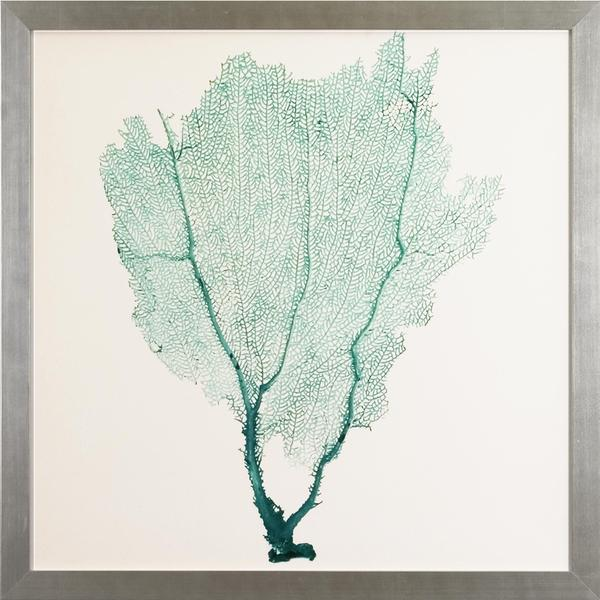 Sea Fans Framed Art Print