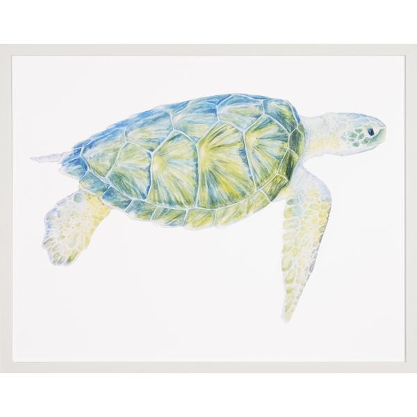 Sea Turtles Framed Art Print