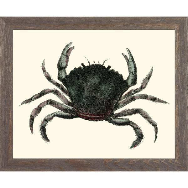 Blue Crabs Framed Art Print