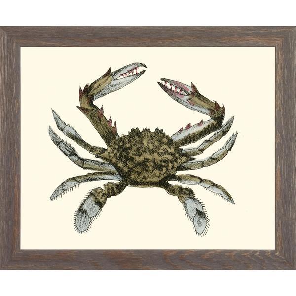 Blue Crabs Framed Art Print