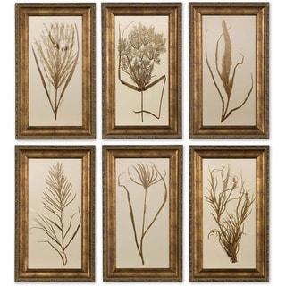 Uttermost Framed Wheat Grass (Set of 6)