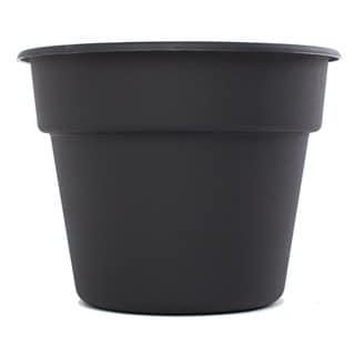 Bloem Black Dura Cotta Planter