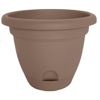 Bloem Lucca Curated Planter (Pack of 12)