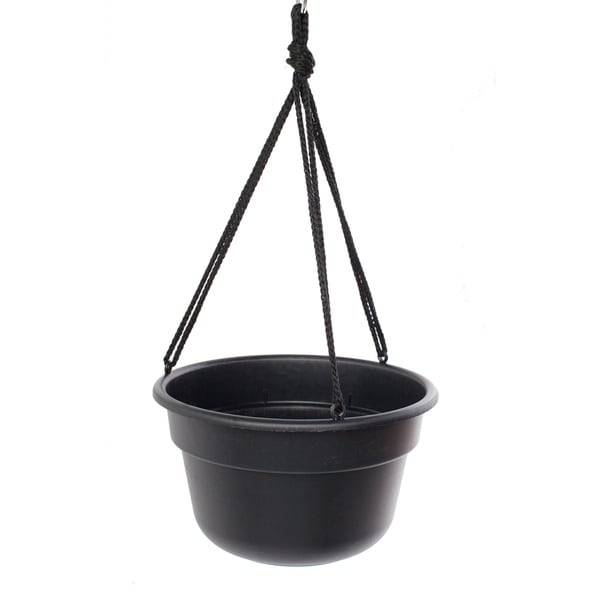Bloem Dura Cotta Hanging Basket Black Planter (Pack of 12)