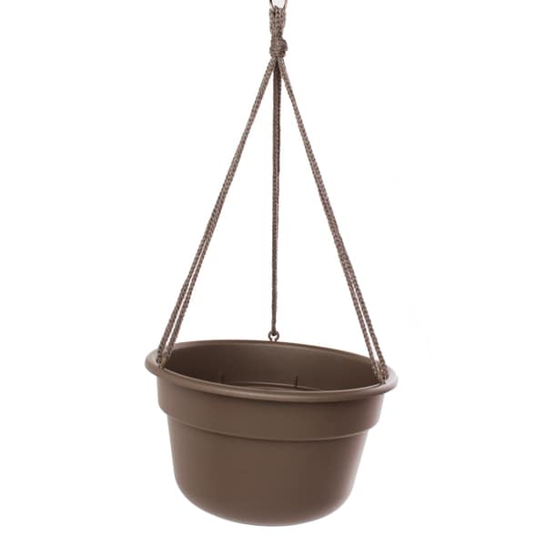 Bloem Dura Cotta Hanging Basket Curated Planter (Pack of 12)
