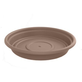 Bloem Dura Cotta Curated Planter Saucer (Pack of 12)