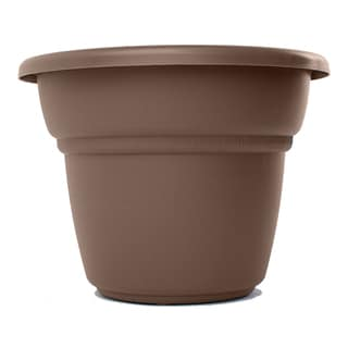 Bloem Milano Curated Planter (Pack of 24)