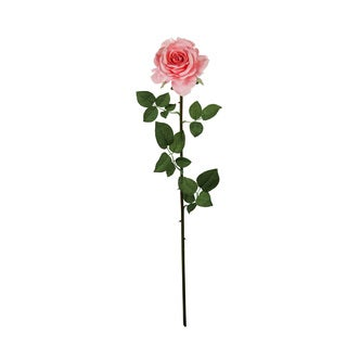 28-inch Open Rose (Set of 12)
