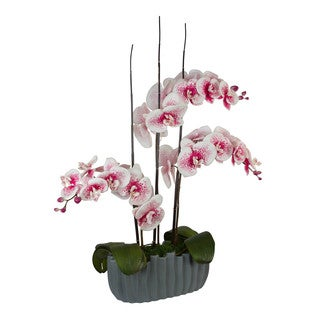 Hadassah Pink Spotted Phalaenopsis Orchids in Vase with Bamboo/ Leaves