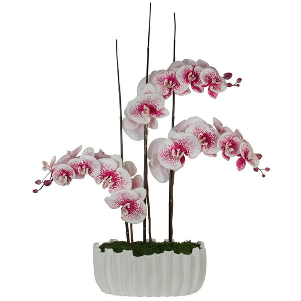 Sapphira Pink Spotted Phalaenopsis Orchids with Bamboo in White Vase