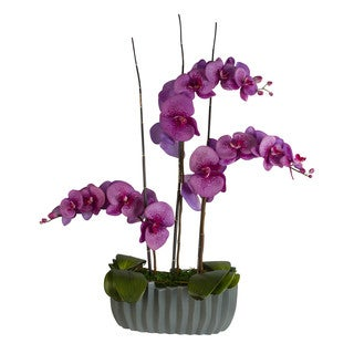 Hadassah Lavender Phalaenopsis Orchids with Bamboo/ Leaves in Vase
