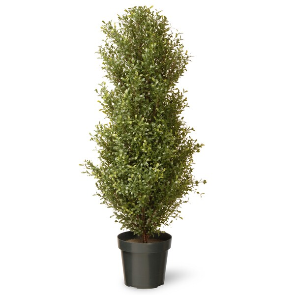 48-inch Argentia Plant with Green Pot