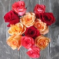 The Bouqs Volcano Collection 'Sunfire' Single Rose Bouquet
