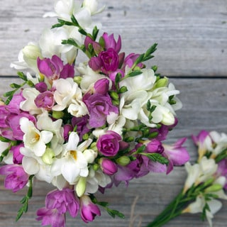 The Bouqs Volcano Collection 'Milkshake' Deluxe Freesia Bouquet