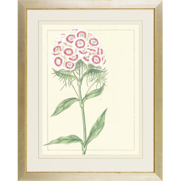 Green/ Pink Botanical Softness Framed Art Print