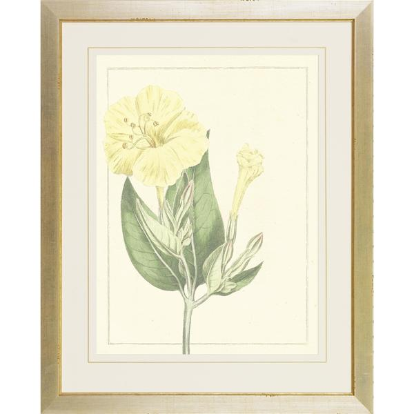 Botanical Softness Framed Art Print