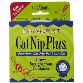Gimborne Catnip Plus Easy Grow Kit